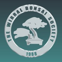 bonsai_wirral_bonsai_society_01.jpg image